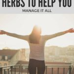 Herbs to Handle it All: Adaptogens