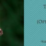 Thyroid Tests: The (Often Overlooked) Essentials