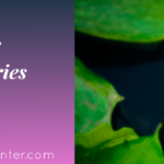 Why Detox 1 – Glyphosate