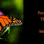 Perimenopause: The Beginning of Your Metamorphosis