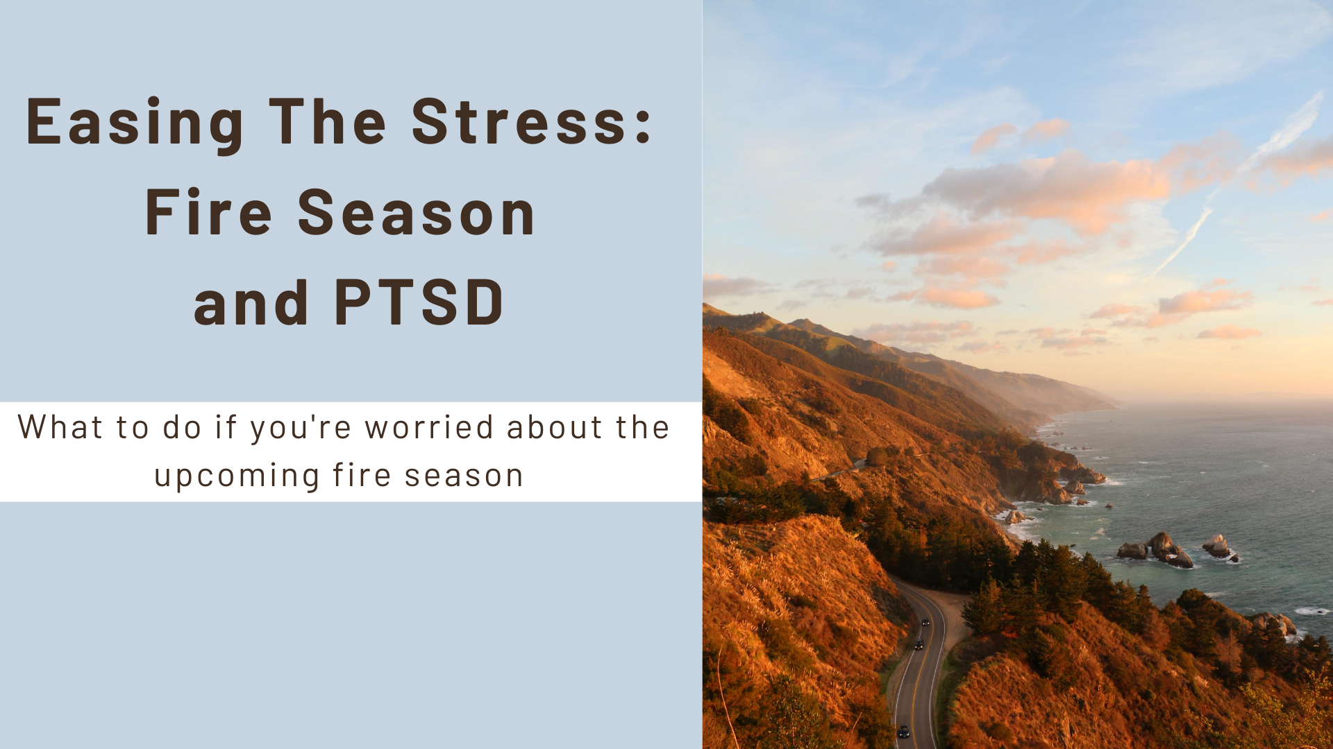 Easing The Stress: Fire Season and PTSD